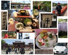 GW 食べ歩き(走り)レポート2日目・・・宇治 中村藤吉 抹茶スィーツと鳳凰堂