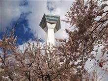花見旅2016 第2章 北海道前編