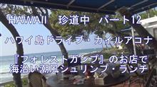 Hawaii 珍道中 パート 12 ハワイ島ドライブ/カイルアコナ  ランチはヤッパリ此処だねBUBBA・GUMP ^^!