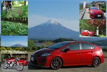 エビネランとクマガイソウと富士山