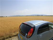 金色の麦畑