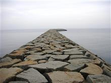 ナニコレ珍百景の堤防