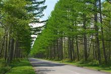 八ヶ岳新緑・山梨の木ドライブ