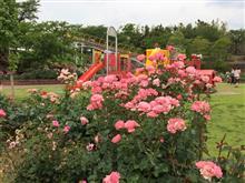 神戸町ばら公園