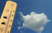本格的な暑さを前に
