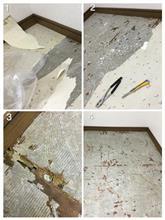 DIY 床:クッションフロア剥がし