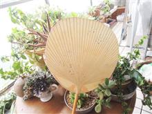 夏はうちわ、池田含香堂の団扇。