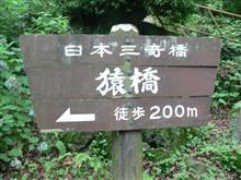 アルぼんと猿橋を見に行ってきました。(アルぼん写真多め)