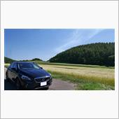 北海道の夏~