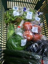 買い物 お野菜
