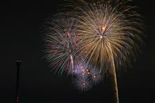 多摩湖 夕涼み花火オフ会&カワセミ撮影