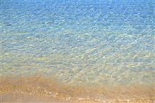 夏だ♪・・海に行ってみよう♪