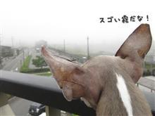 2016.08.18-19 ディノ君と行く軽井沢・上州の旅♪