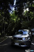 夏・飛竜の滝