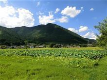 暑いので自宅から離脱・・・、篠山のカフェ探訪へ。