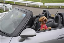 初めての二人っ切りでのオープンドライブ!