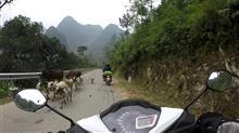 ベトナム北部ではおそらくベスト?