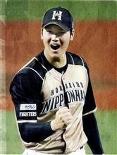 優勝おめでとう、日ハム。今シーズンのプロ野球を見て思うこと。