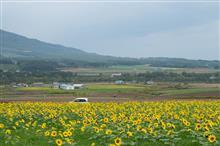N-WGNで埼玉から北海道旅行ってどうなの?