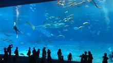 沖縄・美ら海水族館イイね!