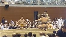気晴らしに、大相撲?