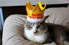 「誕生日だけどいつもと変わらない毎日」とDEMIO…