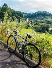 今朝のサイクリング。