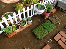 朝から庭弄り