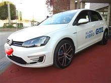 〈試乗車〉VW New Golf Ⅶ GTE