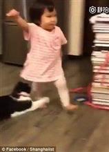 猫が幼児の脚をわざとひっかけてこかす動画が世界中で話題に!!