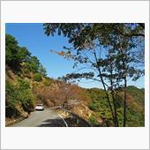 三重県道710号飯南三瀬谷停車場線 」はがねいちのブログ | はがね ...