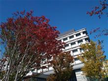 Autumn★秋を感じて・・