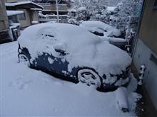 なぜ私が雪をかなり気にするのか