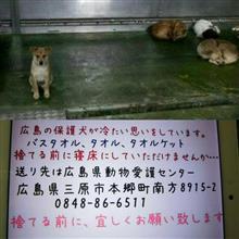 拡散希望、ご協力お願いします 広島県動物愛護センター
