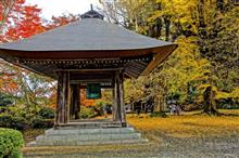 広徳寺の紅葉
