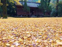 秋の散歩&登山計画
