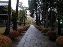 雨もまた良し、広園寺の紅葉