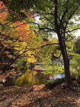 春から秋まで・・・
