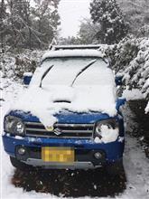 11月の積雪は