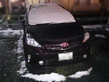 雪が降ったぞ!