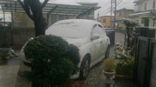 11月に初雪&積雪記念