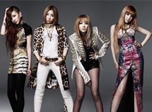 2NE1解散( ;  ; )