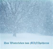 MINI原人雪とたたかう MINIpithecus kämpft gegen Schnee 2