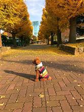川崎大師公園