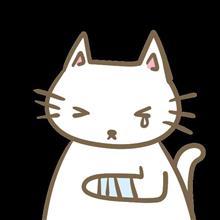 猫ちゃま、930に噛まれる!!