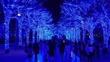 青の洞窟・SHIBUYA