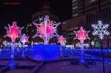 Sapporo White Illumination 2016
