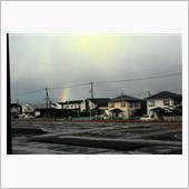 またまた虹を