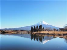 富士山とゆずさんと…お散歩日記