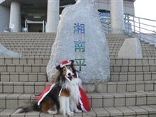 24日は湘南平に行ってきました